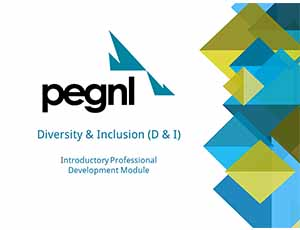 pegnl-diversity and inclusion module 3